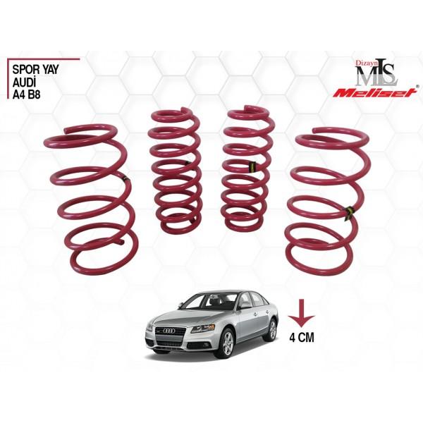 Audi A4 B8 Spor Yay Helezon 40mm İndirme